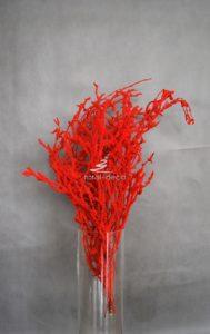 czerwone dodatki florystyczne