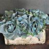 Dekoracja kwiatowa flowerbox