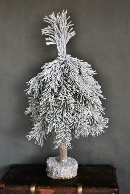 Żywa choinka na pniu ośnieżona z natutalnego stroiszu pachnąca lasem